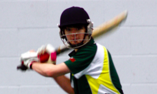 Lincs Cricket